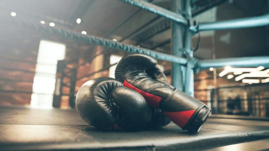 Best Vegan Boxing Gloves